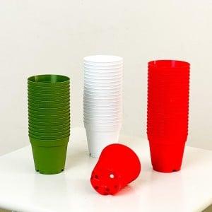 Fidan Burada - 5.5 cm Kaktüs ve Sukulent Yetiştirme Saksısı 100 Adet Karışık Renkli