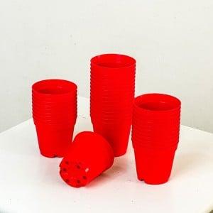 Fidan Burada - 5.5 cm Kaktüs ve Sukulent Yetiştirme Saksısı 100 Adet Kırmızı