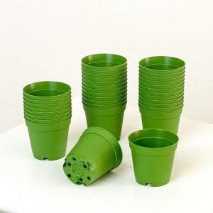 Fidan Burada - 5.5 cm Kaktüs ve Sukulent Yetiştirme Saksısı 100 Adet Koyu Yeşil
