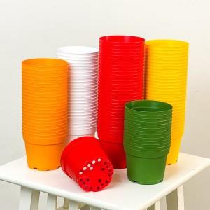 Fidan Burada - 8.5 cm Kaktüs ve Sukulent Yetiştirme Saksısı 100 Adet Karışık Renkli