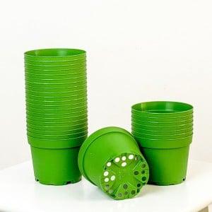 Fidan Burada - 8.5 cm Kaktüs ve Sukulent Yetiştirme Saksısı 40 Adet Koyu Yeşil