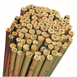 Fidan Burada - Bambu Bitki Destek Çubuğu 60cm 10'lu Set