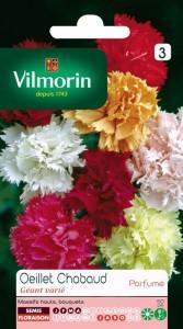 Fidan Burada - KARIŞIK RENKLİ KARANFİL ÇİÇEĞİ TOHUMU ( İRİ ÇİÇEKLİ) - Vilmorin
