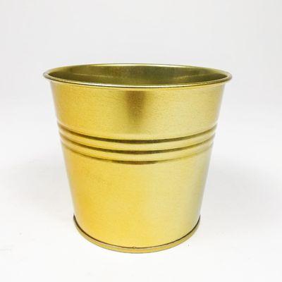 Kayle Renkli Metal Saksı 16 Cm