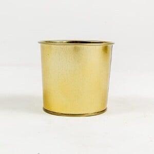 Fidan Burada - Leo Gold Metal Saksı 12 cm