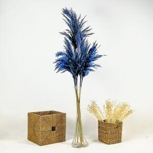 Fidan Burada - Pampas Cam Vazolu - Mavi - 10'lu Kuru Çiçek 120cm