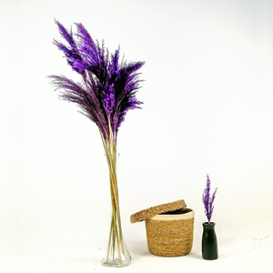 Fidan Burada - Pampas Cam Vazolu - Mor - 10'lu Kuru Çiçek - 120cm