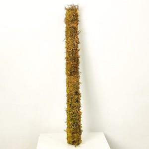 Fidan Burada - Yosun Bitki Destek Çubuğu 90cm